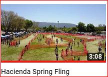 Spring Fling 2017 Video